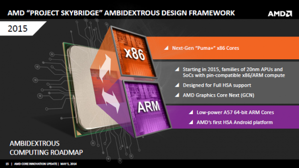 amd_roadmap_3